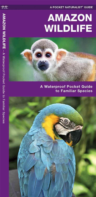 Amazon Wildlife By Kavanagh, James